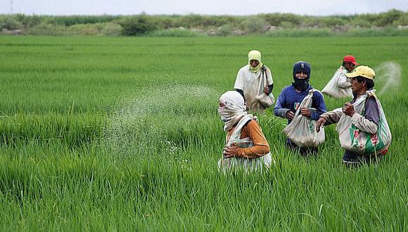 Minagri: Sector agropecuario creció 1,6% en el primer trimestre