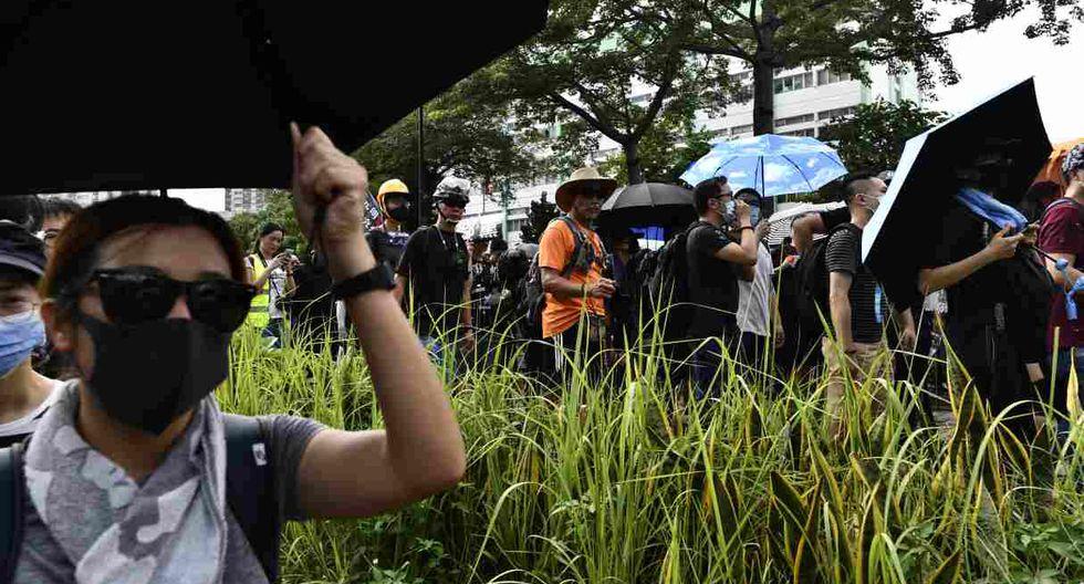 Hombres vestidos con camisetas blancas, armados con bates y palos, propinaron el pasado domingo una paliza a manifestantes antigubernamentales, lo que provocó la manifestación de este sábado. (Foto: AFP)