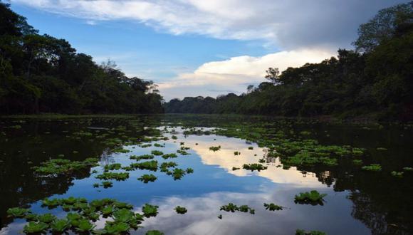 """El objetivo del tratado es """"garantizar la implementación plena y efectiva en América Latina y el Caribe de los derechos de acceso a la información ambiental"""". (Foto: Instagram)"""