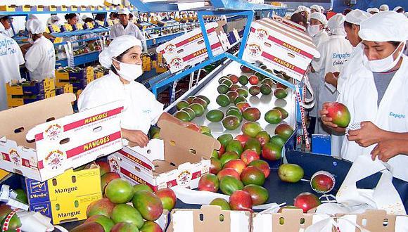 Los envíos de la agroindustria reportó un ligero crecimiento de 0.7% durante el primer semestre. (Foto: GEC)
