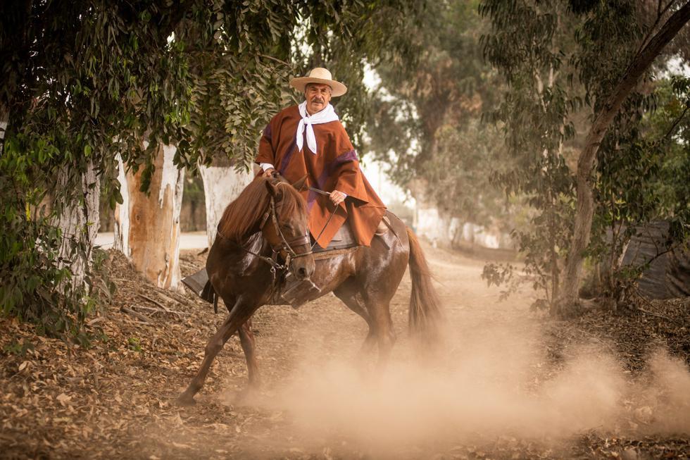 """Willy Maza es piurano pero se enamoró de Pachacámac de tal manera que rehízo su vida en este valle, donde organiza cabalgatas. Es creador del programa """"Explorando nuevas rutas"""". (Foto: Luis Miranda)"""