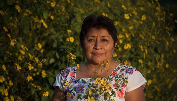 Leydy Pech está rodeada de la flor de tajonal, fuente de néctar y polen para las abejas e insectos polinizadores de la región. A través de la conservación de apicultura tradicional maya, Leydy lucha contra empresas trasnacionales y por el respeto de los derechos de la mujer maya, por un medio ambiente sano. Foto: Robin Canul.