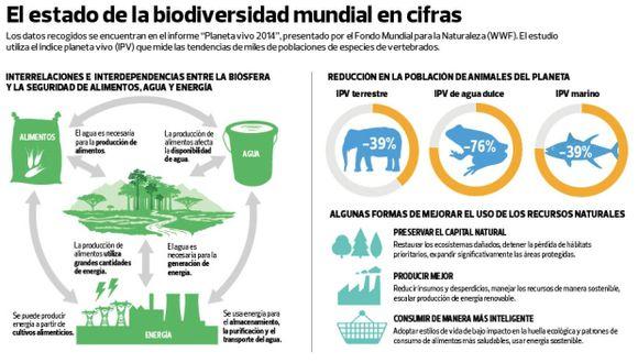 Recursos naturales que produce la Tierra al año ya no alcanzan