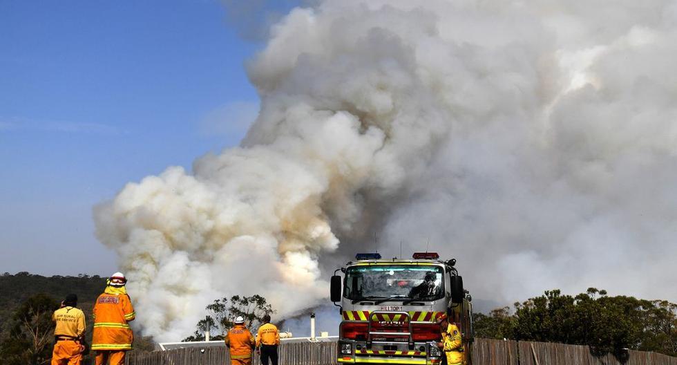 Los bomberos trabajan mientras el humo se eleva de un incendio forestal en Penrose, en el estado australiano de Nueva Gales del Sur. (AFP)