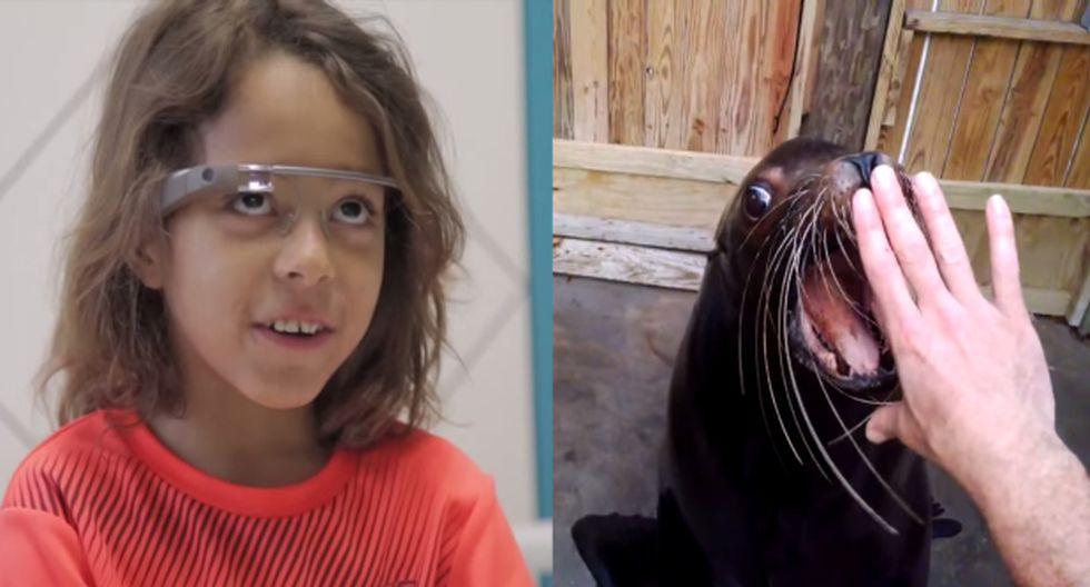 Niños de un hospital visitan zoológico a través de Google Glass