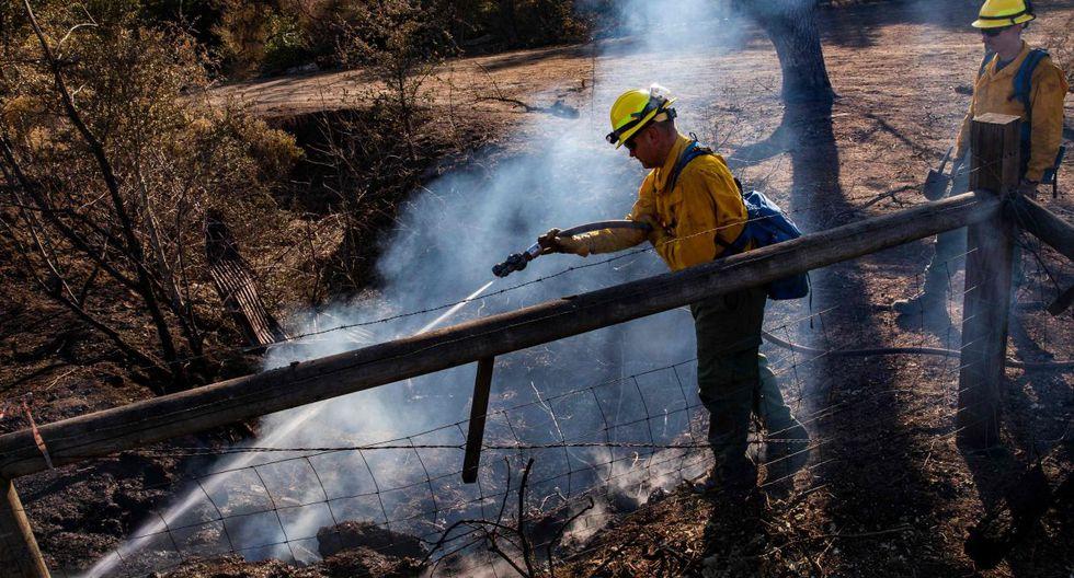 La temporada de incendios causa estragos regularmente en California, pero la frecuencia de incendios ha aumentado significativamente en los últimos años. (Foto: AFP)