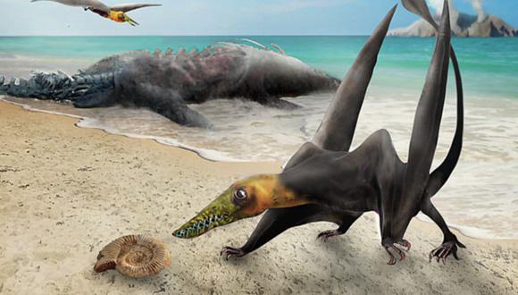 Pterosaurio. (Ilustración: U. de Chile)