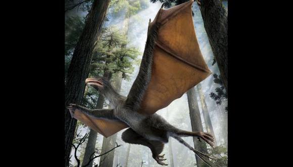 Yi qi, un minidinosaurio con alas de murciélago