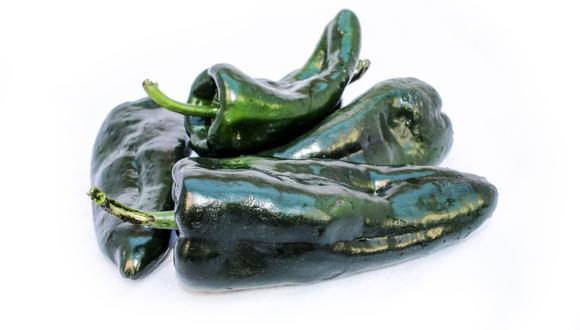 El chile poblano es un gran aliado en la lucha contra el cáncer debido a sus vitaminas y antioxidantes (Foto: Pixabay)