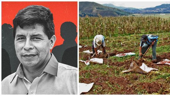 """""""Lo que entendemos como segunda reforma agraria es el desarrollo rural agrario y participativo como una decisión política importante para la gestión de una agricultura con enfoque territorial y desde abajo"""", dice el texto de Perú Libre. (Foto: Archivo)"""