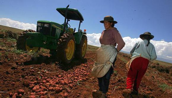 El sector agrario no ha recibido ningún apoyo económico hasta el momento. (Foto: El Comercio)