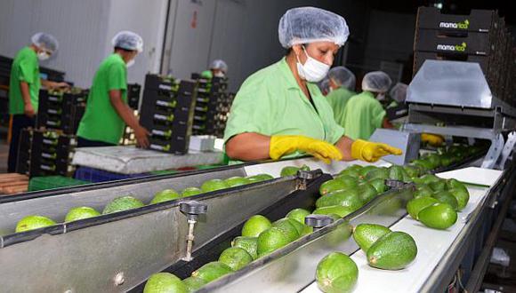 Las paltas, uvas y arándanos fueron los productos con mayor volumen de exportación. Se espera alcanzar más de US$7,000 millones al cierre del 2018. (Foto: USI)