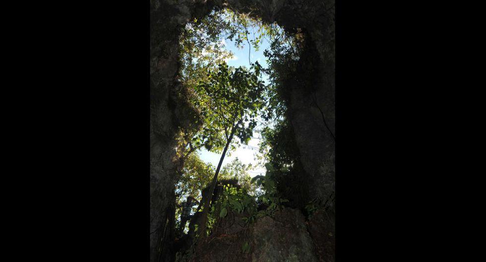 Tunqui Cueva. Es una cueva húmeda de piedra caliza. Las paredes están llenas de moho y musgo, por lo que se debe tener mucho cuidado al caminar. (Foto: PromPerú)