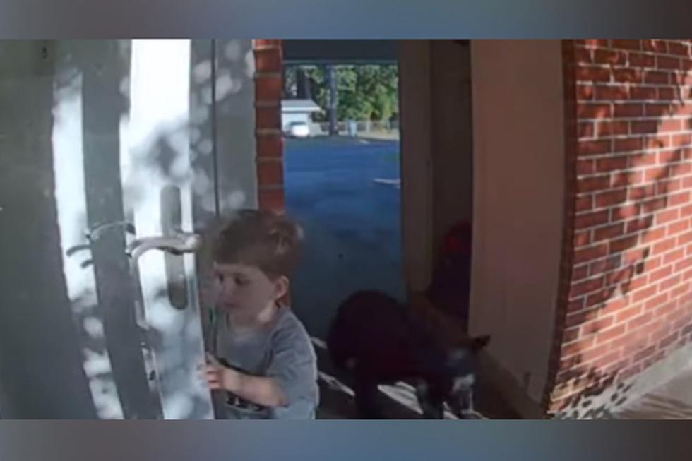 El niño jamás imaginó encontrarse con un oso en la puerta de su casa. (YouTube: ViralHog)