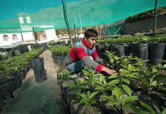 Día Mundial de la Tierra: iniciativas que apuestan por una economía sostenible