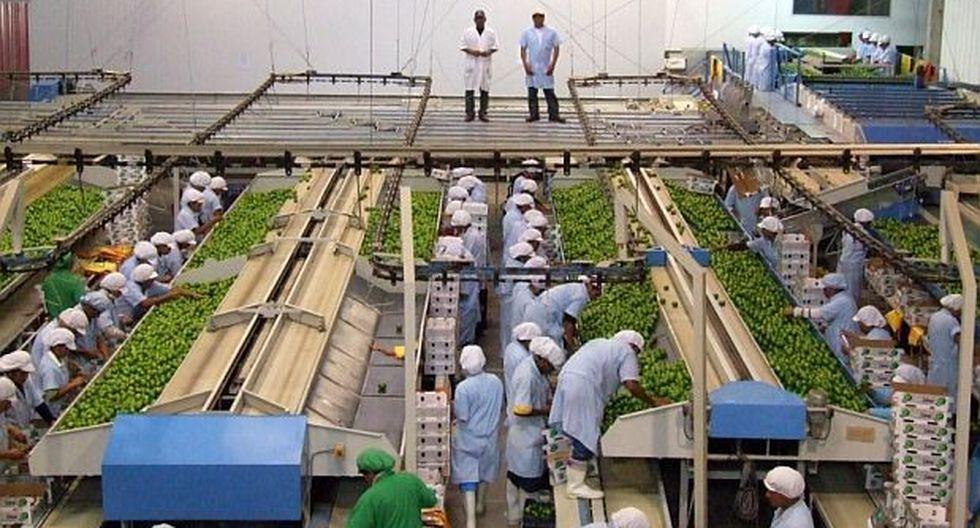 La ley de promoción agraria fue promulgada en el 2000 y extendida en 2010 hasta 2021.
