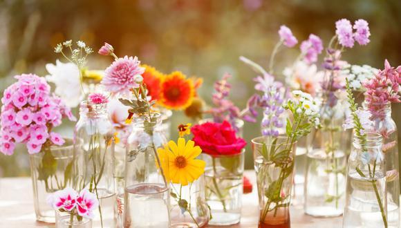 Las botellas de licor con diseños llamativos o de tonos fuertes pueden funcionar como floreros.  (Foto: Shutterstock)