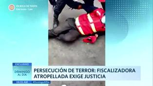 Persecución del terror: fiscalizadora atropellada pide justicia
