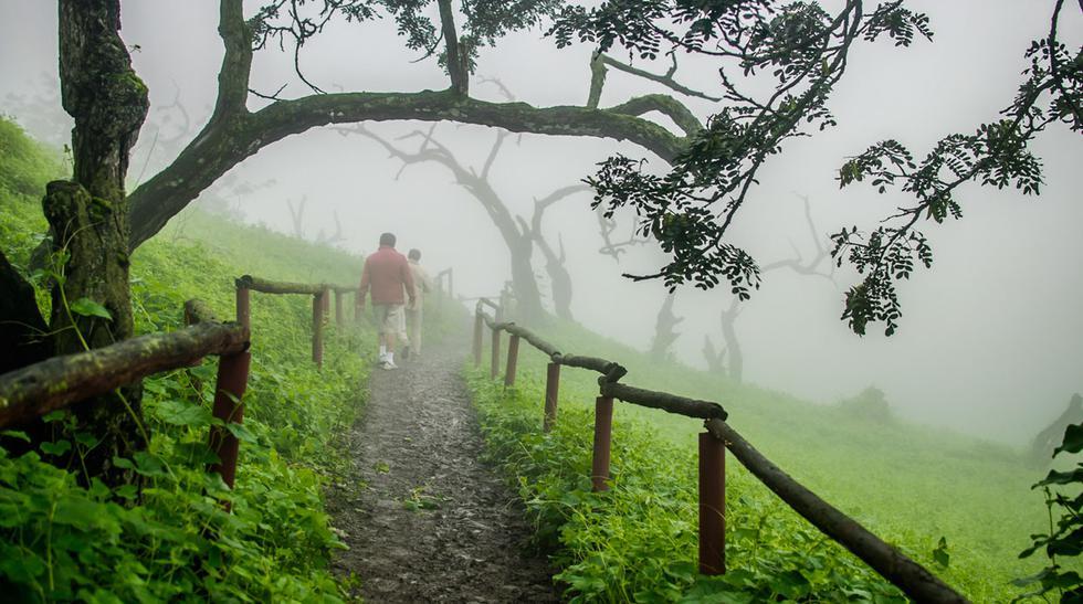 5 fascinantes rutas de trekking dentro del departamento de Lima - 2