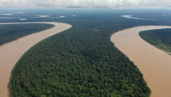 """""""Es urgente que el Gobierno tome medidas para la protección y el desarrollo apropiado de este legado y riqueza amazónica, dado su estado de alta vulnerabilidad""""."""