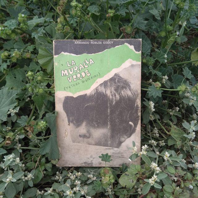 La película nació a partir de una novela escrita por Armando Robles Godoy pero publicada recién en 1971. Se editaron 2.000 ejemplares y no ha sido reimpresa. (Fuente: Fanpage de Armando Robles Godoy, en Facebook).