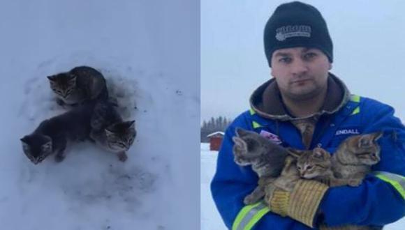 El hombre decidió compartir en las redes sociales el video donde aparece rescatando a los mininos (Foto: Facebook)