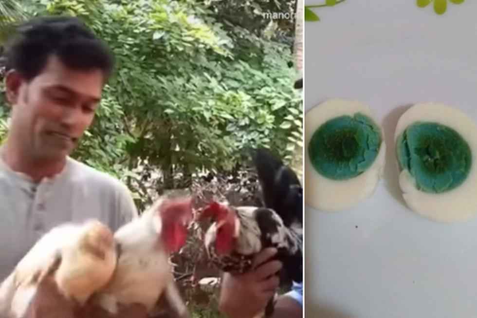 A.K. Shihabudheen, dueño de las gallinas, compartió diversas fotos sobre los huevos con yema verde. (Facebook: Shihabudheen Ak)