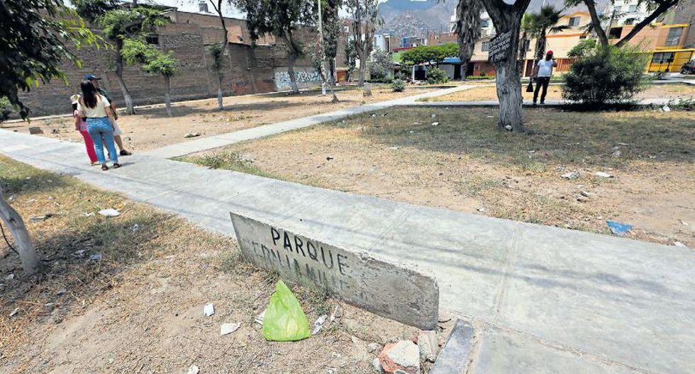 El déficit de parques y jardines se agravó en San Juan de Lurigancho tras el aniego del 13 de enero. (Alessandro Currarino / El Comercio)