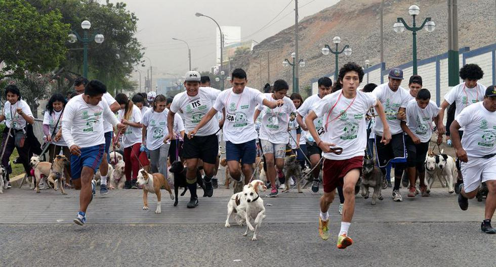 Ventanilla: 'perrotón' convocó a gran cantidad de canes [FOTOS] - 5