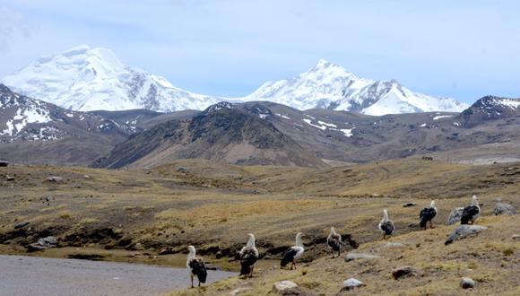 """""""Desde tiempos inmemoriales, el Perú fue una sociedad serrana, siendo el incaico el único gran imperio en la historia universal que se desarrolló por encima de los 2.500 m. sobre el nivel del mar"""". (Foto: Yvette Sierra Praeli)"""