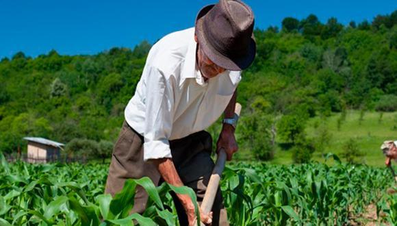 A inicios de diciembre del 2020 se derogó la antigua ley de promoción del sector agrario [Ley 27360]. (Foto: Archivo)