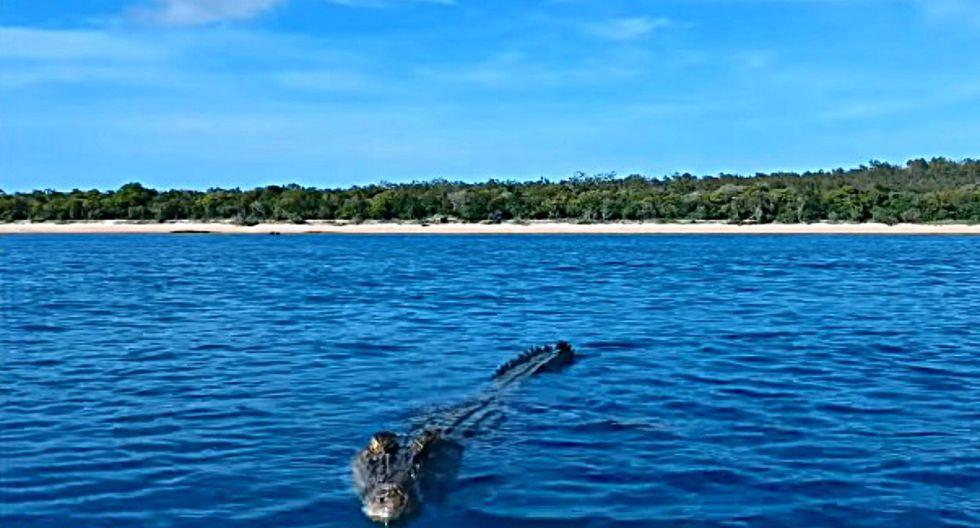El impactante video fue capturado en las costas de Groote Eylandt, una isla del norte de Australia. (Foto: Referencial/Pixabay)