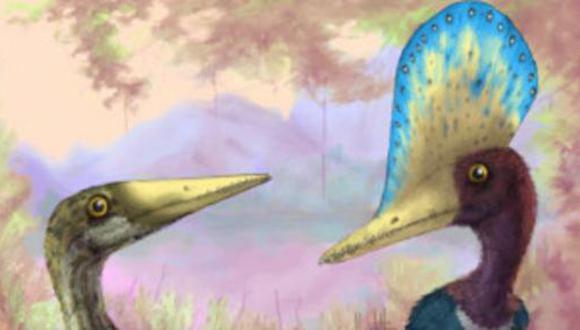 China: hallan huevos en buen estado de un dinosaurio volador