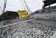 Pesca de anchoveta registra avance de 23% de cuota asignada para primera temporada de 2020