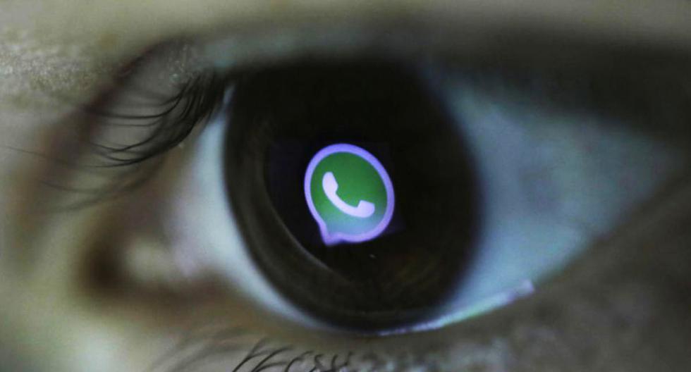 ¿Quieres saber quién vio tu perfil de WhatsApp? Antes debes conocer esto. (Foto: EFE)