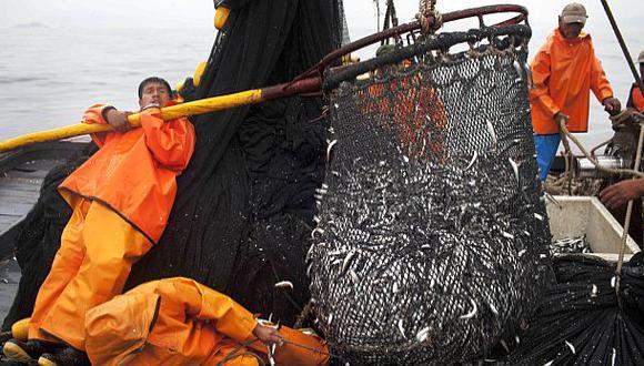 Pesca de anchoveta aumentaría en un 30% durante el 2015