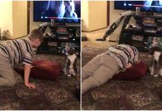 Niño sufre una crisis nerviosa frente a su gato y la insólita reacción del animal deja boquiabiertos a todos