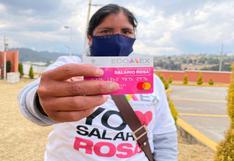 Salario Rosa 2021: ¿Dónde y cómo saber si soy beneficiario del subsidio?