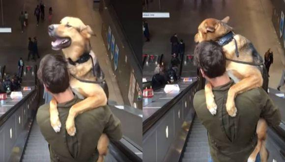 Perro y su dueño protagonizan simpática escena dentro de un centro comercial. (Foto: Captura YouTube)