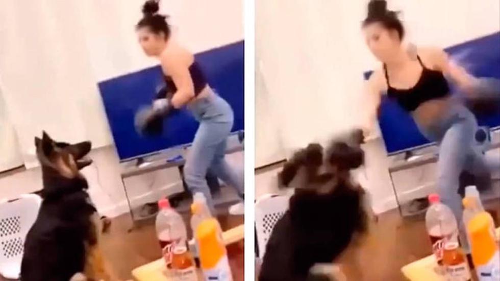En el video se observa a la mujer, enfundada con guantes de box, propinándole una golpiza a su mascota, un pastor alemán, en particular a la cabeza del animal. (Foto: Captura Facebook)