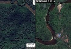 Banco Mundial financiará proyecto contra deforestación en Ucayali por US$12,2 mlls.