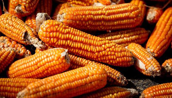 """""""La ampliación de la moratoria generaría graves perjuicios para el país, en particular para los pequeños agricultores"""", según ComexPerú. (Foto: GEC)"""