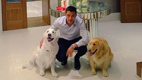 Alexis contó curiosidades de sus perros en charla con Arsenal