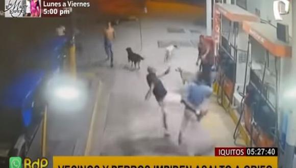 La oportuna aparición de un grupo de residentes del lugar y la decidida acción de las mascotas del establecimiento evitaron el atraco. (Captura Panamericana TV)