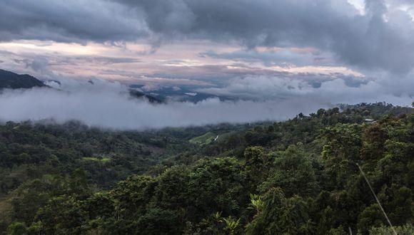 El expediente del área de conservación se encuentra ahora mismo en el Servicio Nacional de Áreas Naturales Protegidas por el Estado (Sernanp), tras su revisión pasaría a la Presidencia del Consejo de Ministros (PCM) para ser aprobada. Foto: Diego Pérez / SPDA.