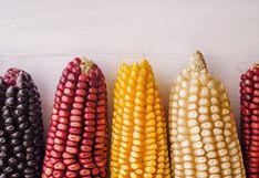 El maíz: un alimento milenario