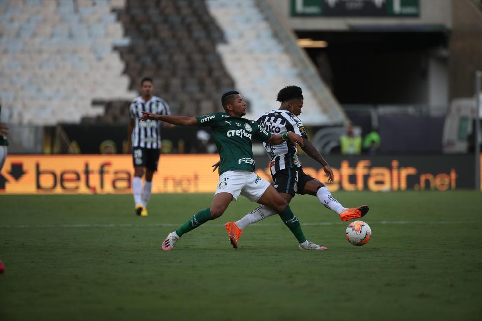 Palmeiras disputó la final de la Copa Libertadores frente al Santos