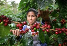 ¿Cuánto impactará la ley agraria a las exportaciones peruanas este 2021?