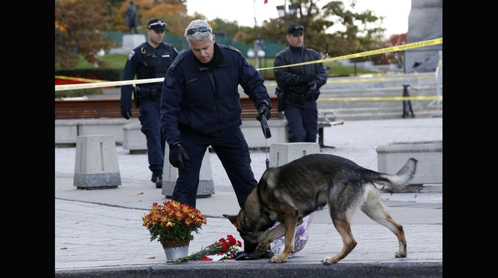 Canadá amaneció rodeado de policías un día después del tiroteo - 11