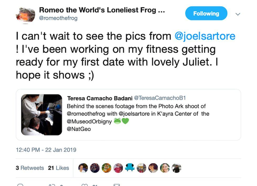 """En su cuenta en Twitter, Romeo le cuenta a sus seguidores que se está preparando para su """"primera cita con la encantadora Julieta. Espero que se note"""". Captura de Twitter."""